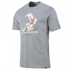 Nike Regional A.D Graphic Ss Tee Erkek Tişört