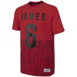 Nike Lebron James 6 Palms Tee Tişört