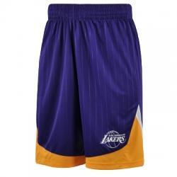 adidas Los Angeles Lakers Winter Hoops Şort